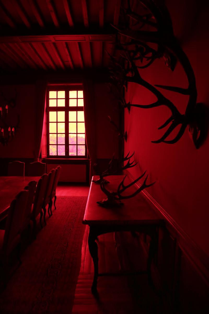 """La salle des trophées traitée pour l'exposition """"Château rouge"""""""